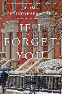 if-i-forget-you
